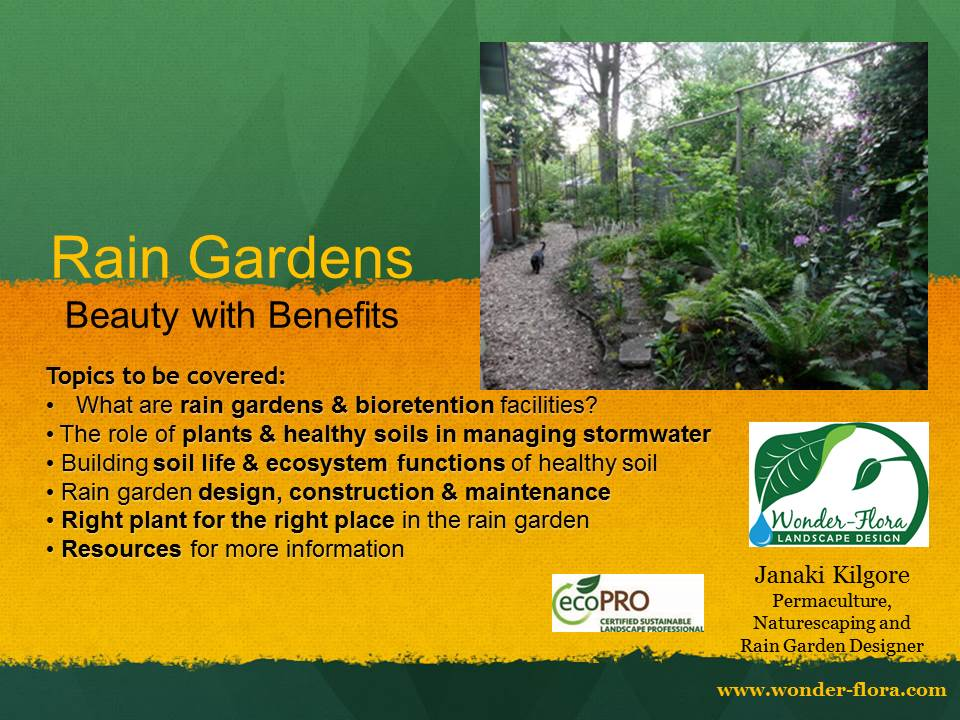 Rain Gardens - wonder-flora.com on rain art drawings, rain gutter downspout design, dry well design, rain roses, rain water design, french drain design, rain construction, rain illustration, rain barrels, gasification design, bioswale design, rain gardens 101, rain harvesting system design,